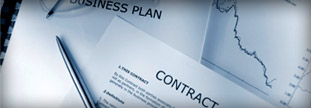 businesslitigation_thumb