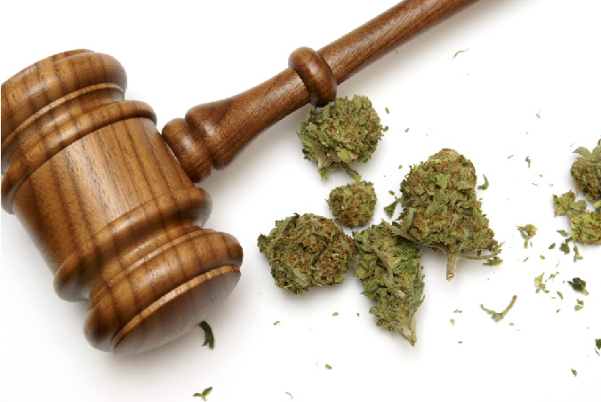 Massachusetts-Legalized- Marijuana